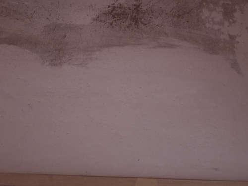 漆喰塗り プロの技